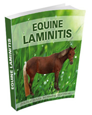 Comprehensive Laminitis ebook